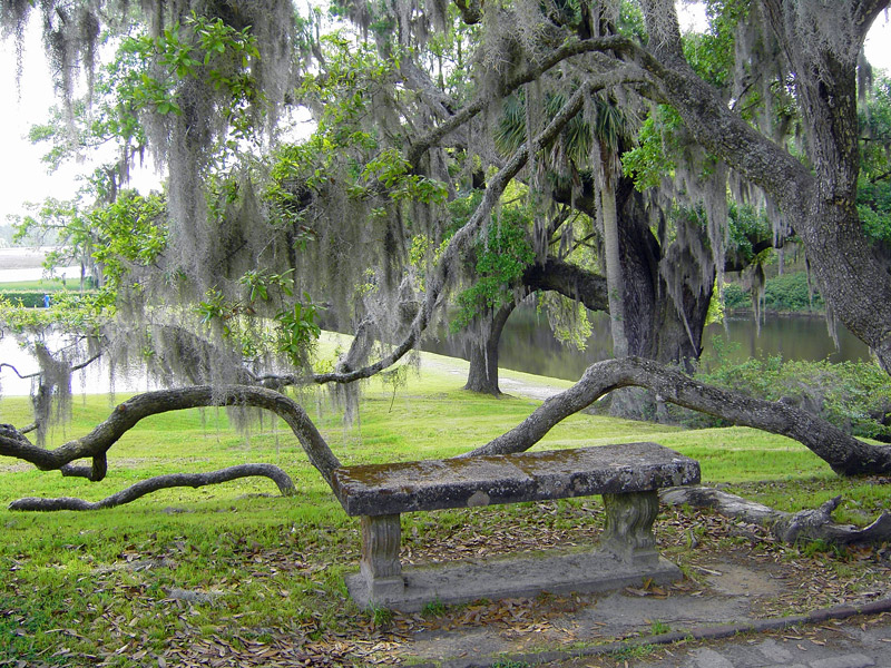 Attractive Middleton Place Gardens, South Carolina