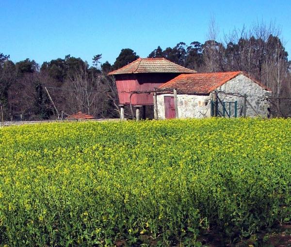 Parque Biológico de Gaia , Portugal