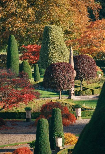 Large drummond castle autumn original
