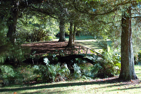 Bridge, Waihi Waterlily Gardens