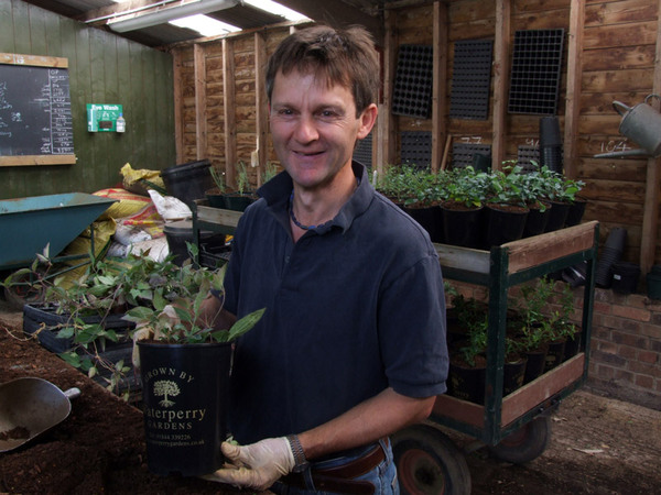 Shrub Nursery Manager, Waterperry Gardens Nursery