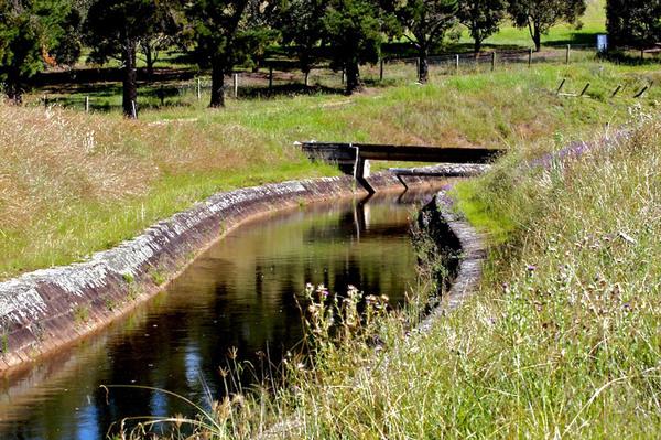 Canal, Mount Annan Botanic Garden