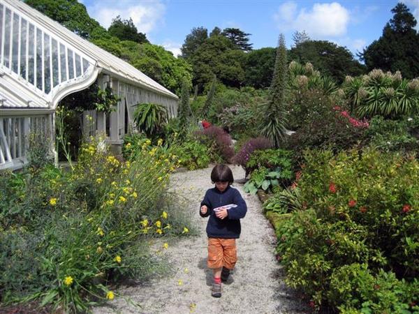 Tregrehan Garden, Cornwall