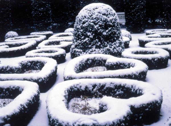 Van Buuren Museum, Winter