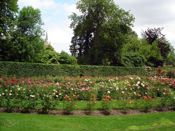 Roseraie, Parc d'Enghein