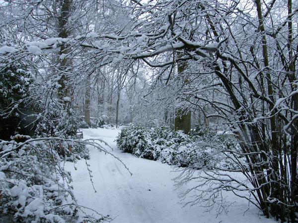 Fairhaven Garden in the Snow
