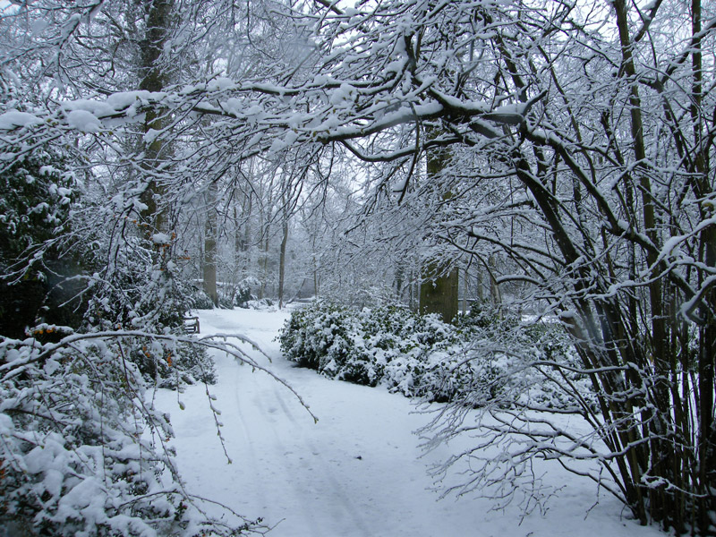 Fairhaven Garden in the Snow