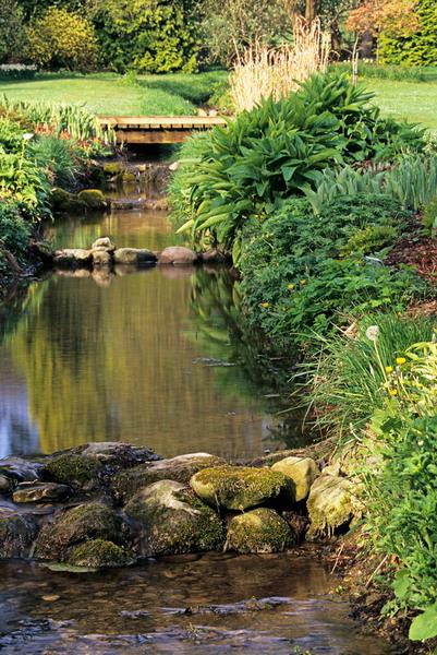Thorp Perrow Arboretum, Bedale