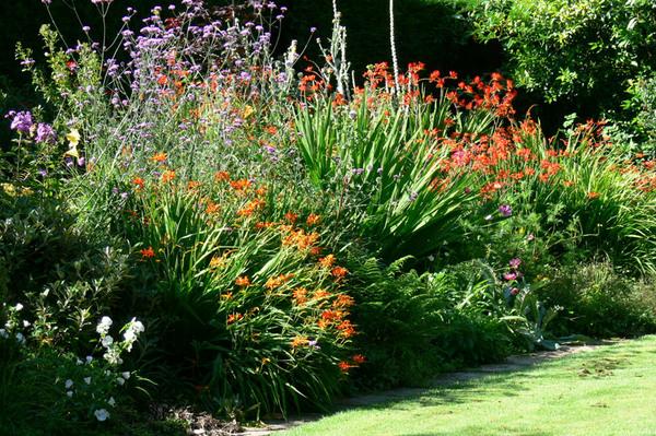 Marsh Villa Gardens, Cornwall