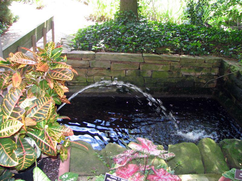 Rodef Shalom Biblical Garden