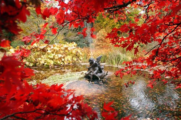 Benmore Botanic Garden, Scotland
