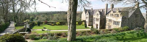 Trerice Garden, Cornwall