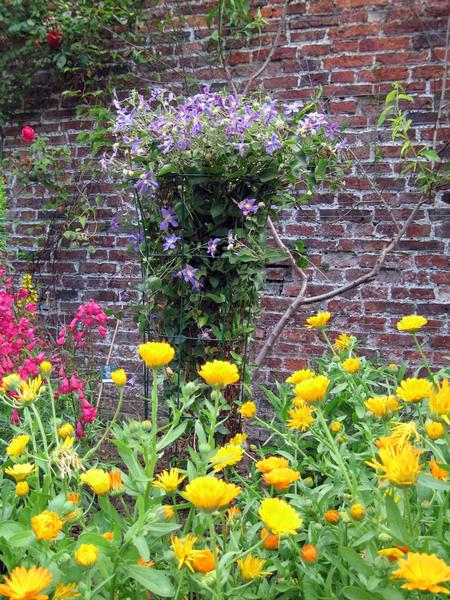 Helmsley Walled Garden, North Yorkshire