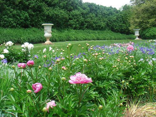 Montpelier Garden, Virginia