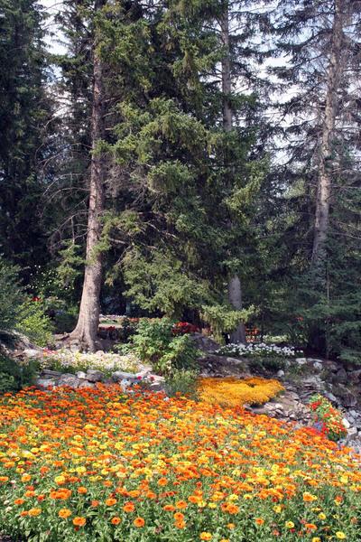 Cascade Gardens, Alberta