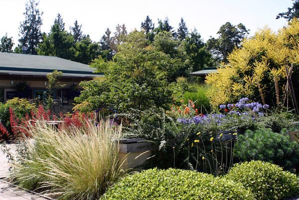 UBC Botanical Garden, Vancouver