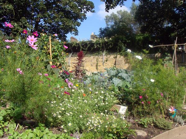 King Henry's Walk Garden, England