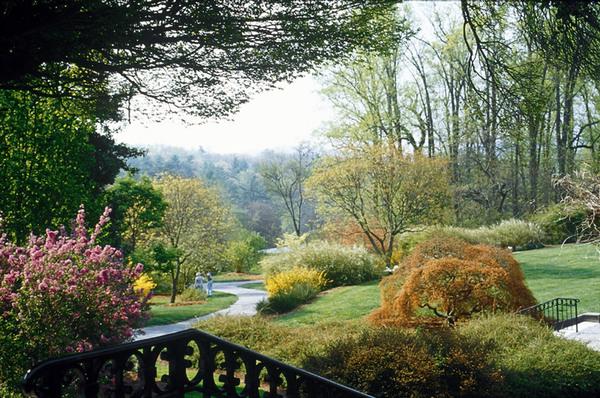 Shrub Garden, Biltmore