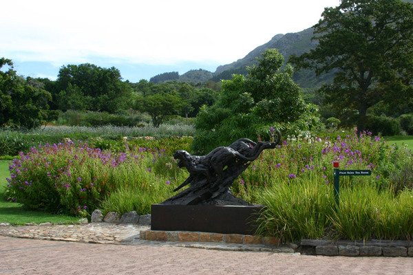 Kirstenbosch Botanic Garden, Cape Town
