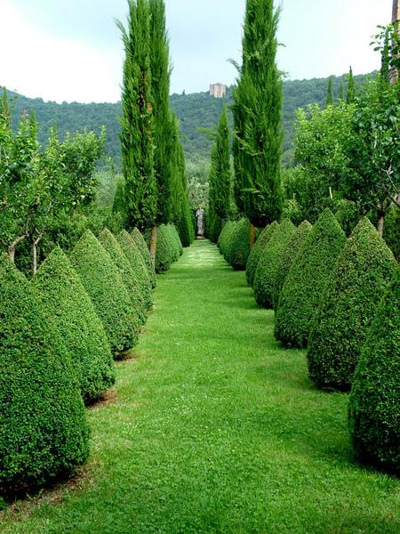 Villa Chigi Cetinale, Italy