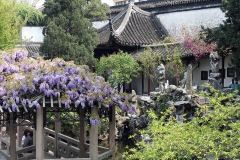 Lion Grove Garden, Suzhou