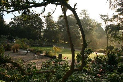 June Blake's Garden, Ireland