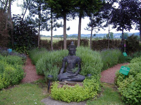 Buddha, Dilston Physic Garden