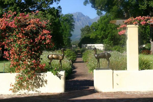 Vergelegen Garden, Western Cape