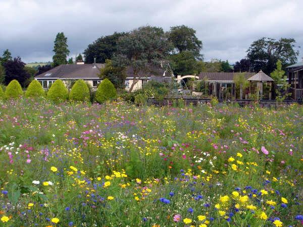Glenview Gardens, County Cork