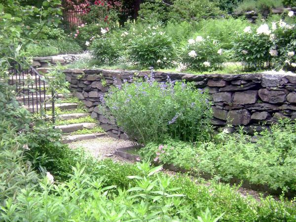 Shakespeare's Head Garden