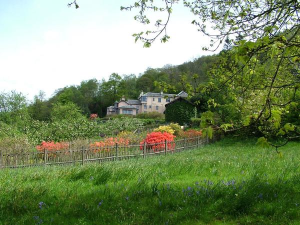 House from Daffodil Field, Brantwood Garden