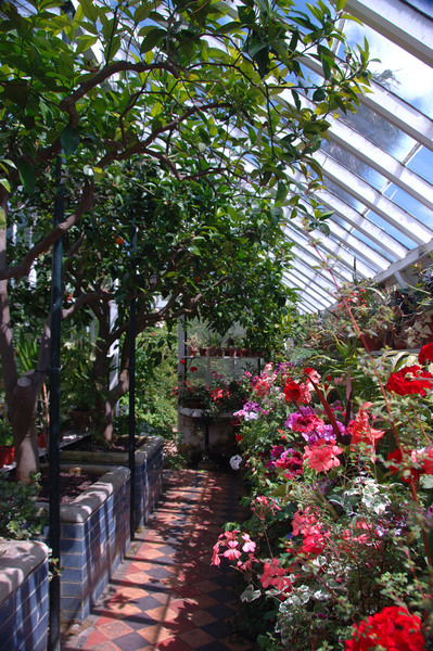Peckover House Gardens