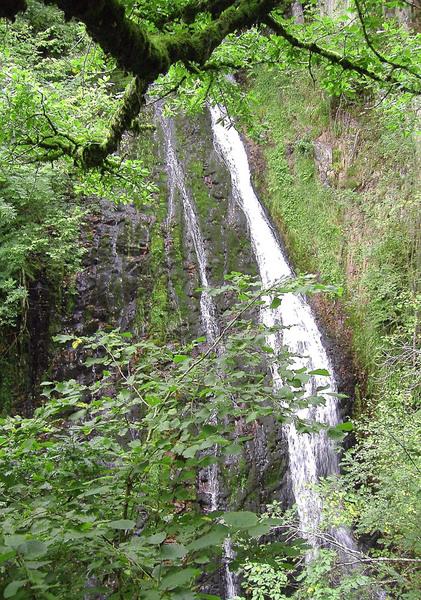 Waterfall, Abriachan Garden