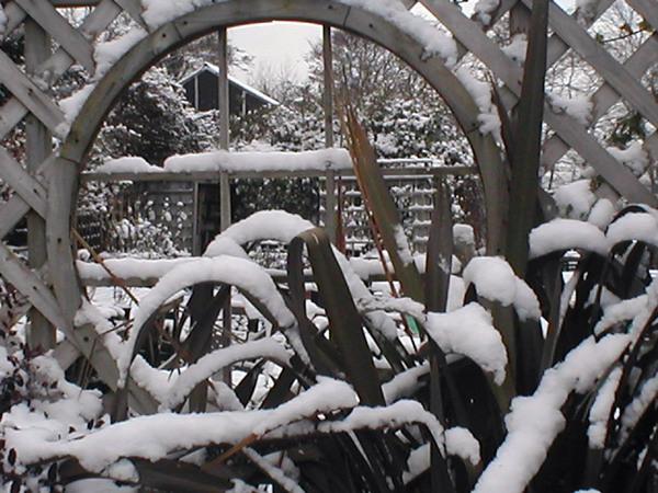 Snow, Abriachan