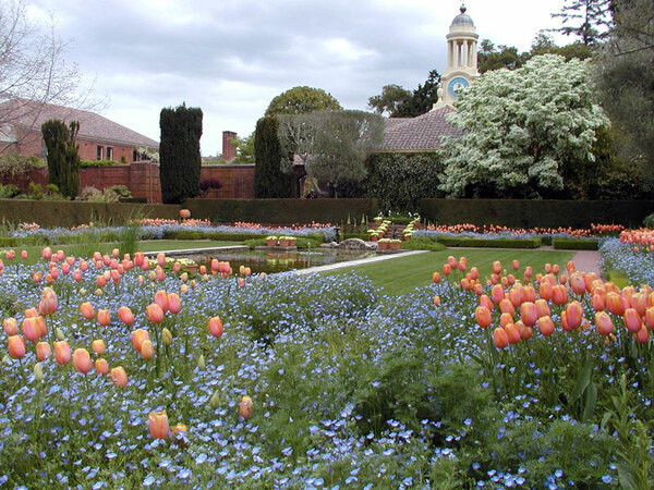 Sunken Garden, Filoli Garden