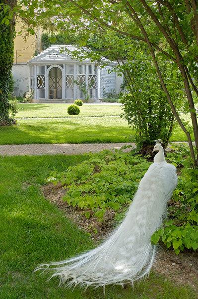 White Peacock, Schloss Eggenberg