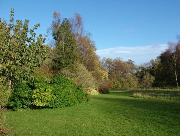 Treborth Botanic Garden, Bangor