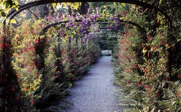 Penrhyn Castle Garden, Gwynedd