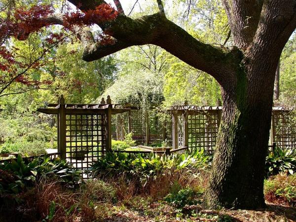 Mobile Botanic Garden
