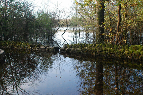 Turlough, Coole Park