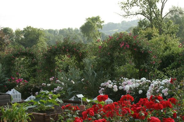 Walled Garden, Houghton Lodge