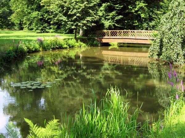 Pond, Fuerst-Pueckler-Park Bad Muskau