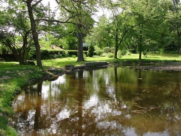 Pond, Awbury Arboretum