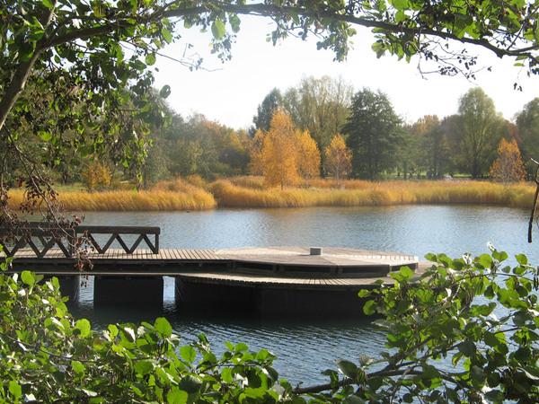 Britzer Garten, November