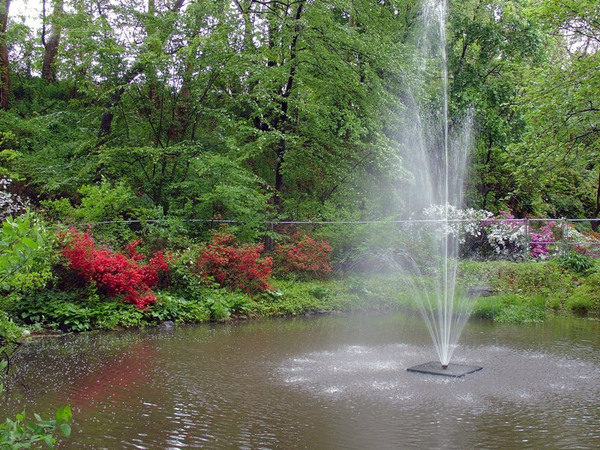 Fountain, Crozer Arboretum