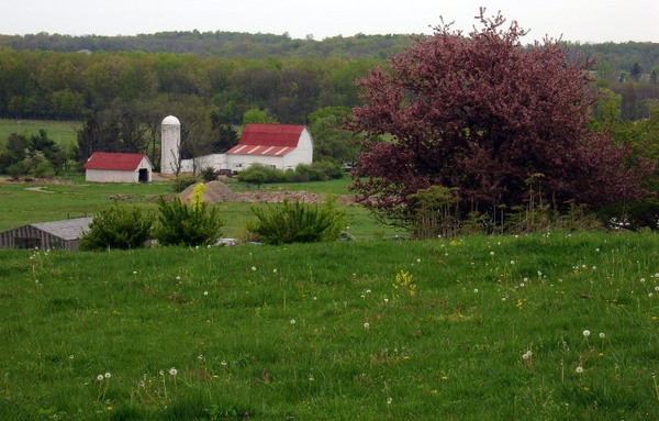 Dawes Arboretum, USA
