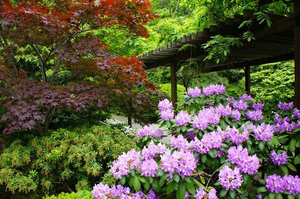 Cleveland Botanic Garden