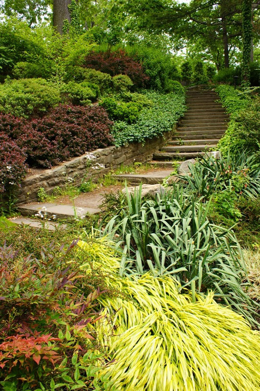 Steps, Cleveland Botanic Garden