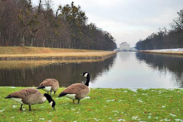 Canal, Nymphenburg Schlosspark