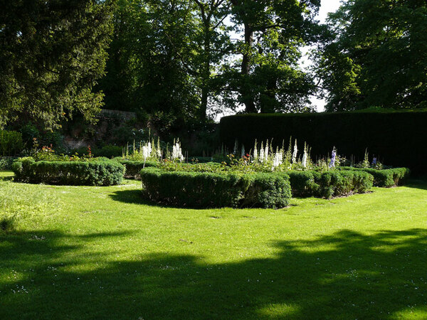 Euston Hall Garden